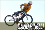 David Pinelli