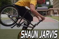 Shaun Jarvis